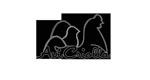 avicriolla_icon